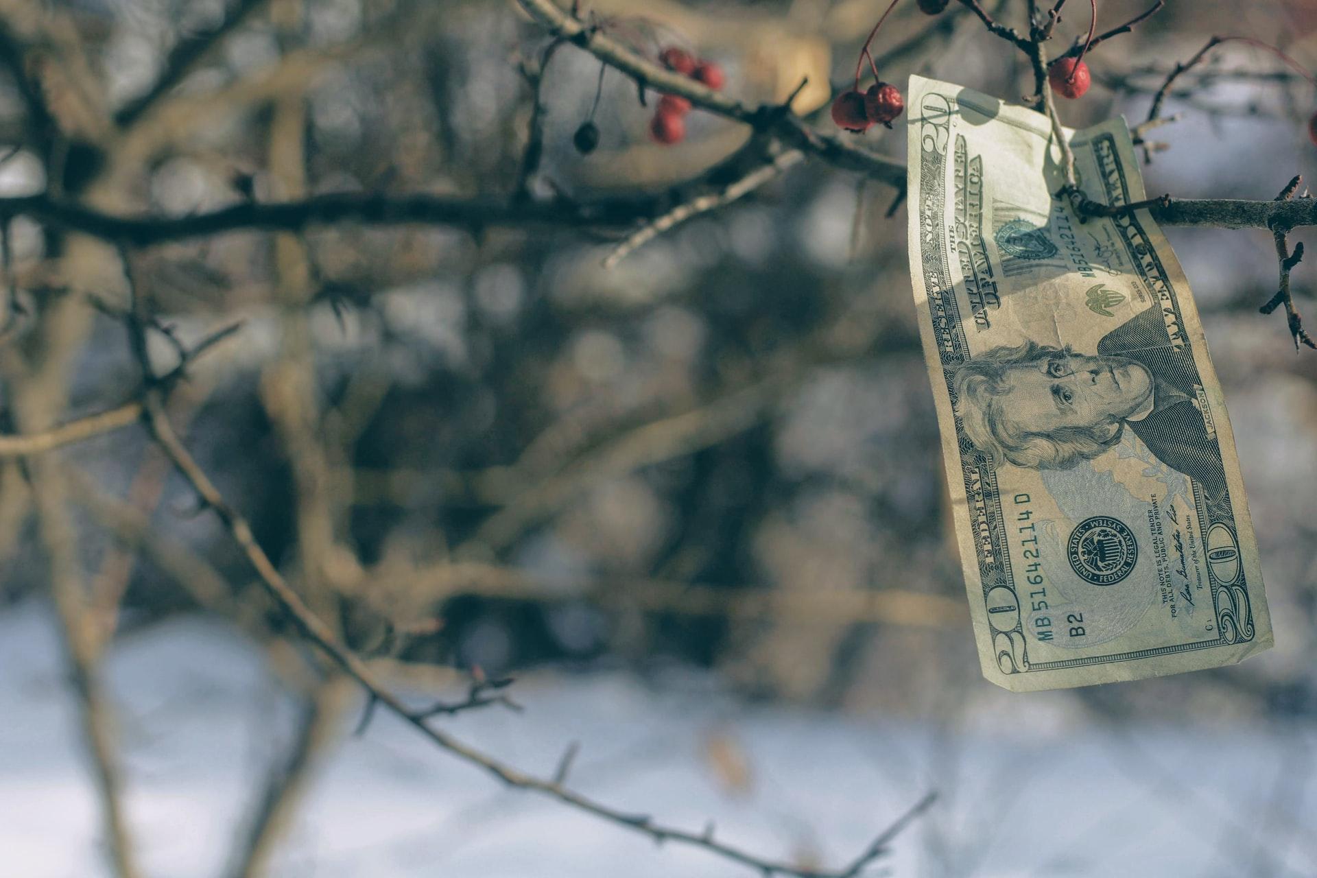 penge på træ